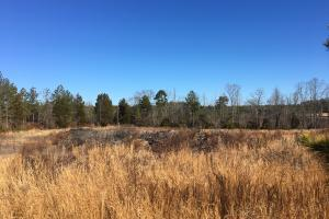 Beautiful Level Land with Creek in Spartanburg, SC (69 of 79)