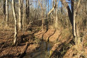 Beautiful Level Land with Creek in Spartanburg, SC (27 of 79)