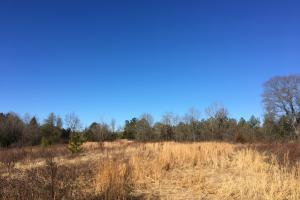 Secluded Homesite With Creek - Spartanburg County SC