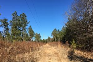 Country Homesite with Creek in Spartanburg, SC (5 of 24)