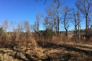 Country Homesite with Creek in Spartanburg, SC (22 of 24)