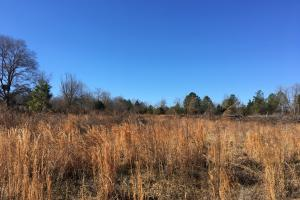 Country Homesite with Creek in Spartanburg, SC (3 of 24)