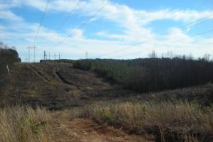 Hwy 120 Recreational, Timber, Hunting Tract in Haralson, GA (2 of 17)