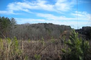 Hwy 120 Recreational, Timber, Hunting Tract in Haralson, GA (16 of 17)