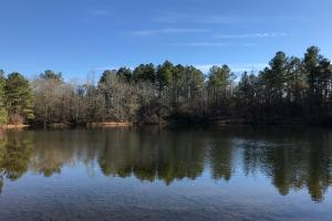 The Courtney Road Farm Tract - Edgefield County SC