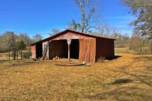Greenville Farm House, Recreational and Timber Tract in Butler, AL (10 of 31)
