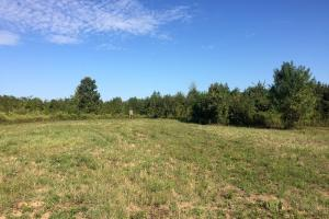 land for sale in al,waterfront land for sale in al (9 of 16)