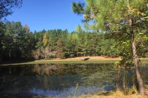 Smallstown Road Homesite with Pond