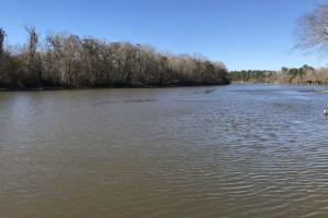 The Tensaw River Stockton Tract - Baldwin County AL
