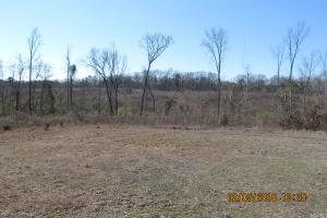 35 Acres of Recreational Land in Hinds County - Hinds County MS