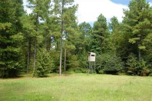 139+/- Acres on Ouachita River with Cabin in Hot Spring, AR (23 of 61)