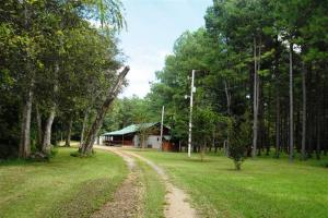 139+/- Acres on Ouachita River with Cabin in Hot Spring, AR (30 of 61)