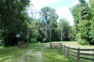 139+/- Acres on Ouachita River with Cabin in Hot Spring, AR (8 of 61)