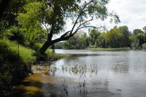 139+/- Acres on Ouachita River with Cabin in Hot Spring, AR (22 of 61)