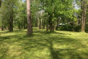 139+/- Acres on Ouachita River with Cabin in Hot Spring, AR (35 of 61)