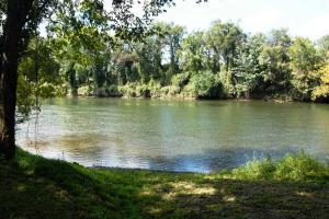 139+/- Acres on Ouachita River with Cabin in Hot Spring, AR (3 of 61)