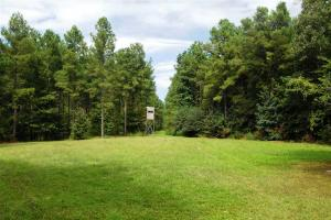 139+/- Acres on Ouachita River with Cabin in Hot Spring, AR (6 of 61)