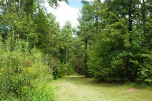 139+/- Acres on Ouachita River with Cabin in Hot Spring, AR (27 of 61)