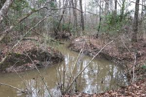 Georgiana Homesite & Timber Investment - Butler County AL