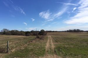 County Road 37 Farm/Recreational Tract - Chilton County AL