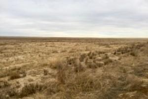 Eads, CO Farm Ground For Sale