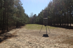 Hampton County Recreational & Timber Investment - Hampton County SC