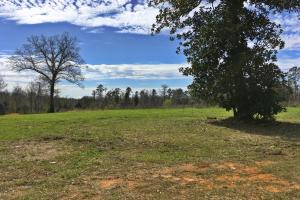 Camden Bypass Commercial Property - Wilcox County AL