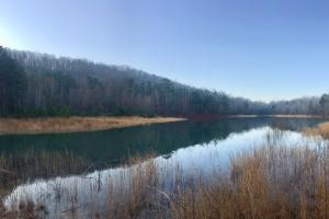 Taits Gap Recreational Hunting & Timber Tract - Blount County AL