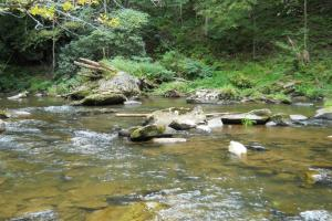Mountain Fly Fishing and Hunting Rock structure for Trout (16 of 22)