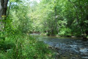 Mountain Fly Fishing and Hunting Parts of Big Rock Creek are slower than others. (21 of 22)