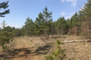 Development Tract Hickory - Catawba County NC