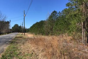 Odenville Hidden Ridge Potential Development & Timber Tract - Saint Clair County AL