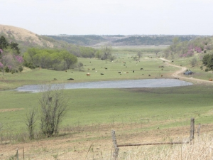 Flint Hills Kansas Ranch - Pottawatomie County KS