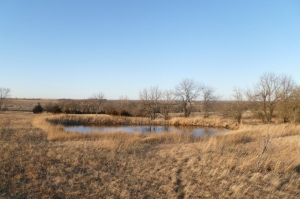 Shawnee County CRP and Hunt - Shawnee County KS