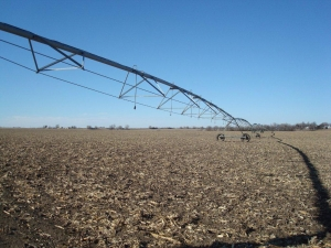 Fillmore County Irrigated Farm - Fillmore County NE
