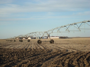 Saline County Irrigated Farm  - Saline County NE