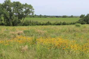 Awesome Otoe County Acreage - Otoe County NE