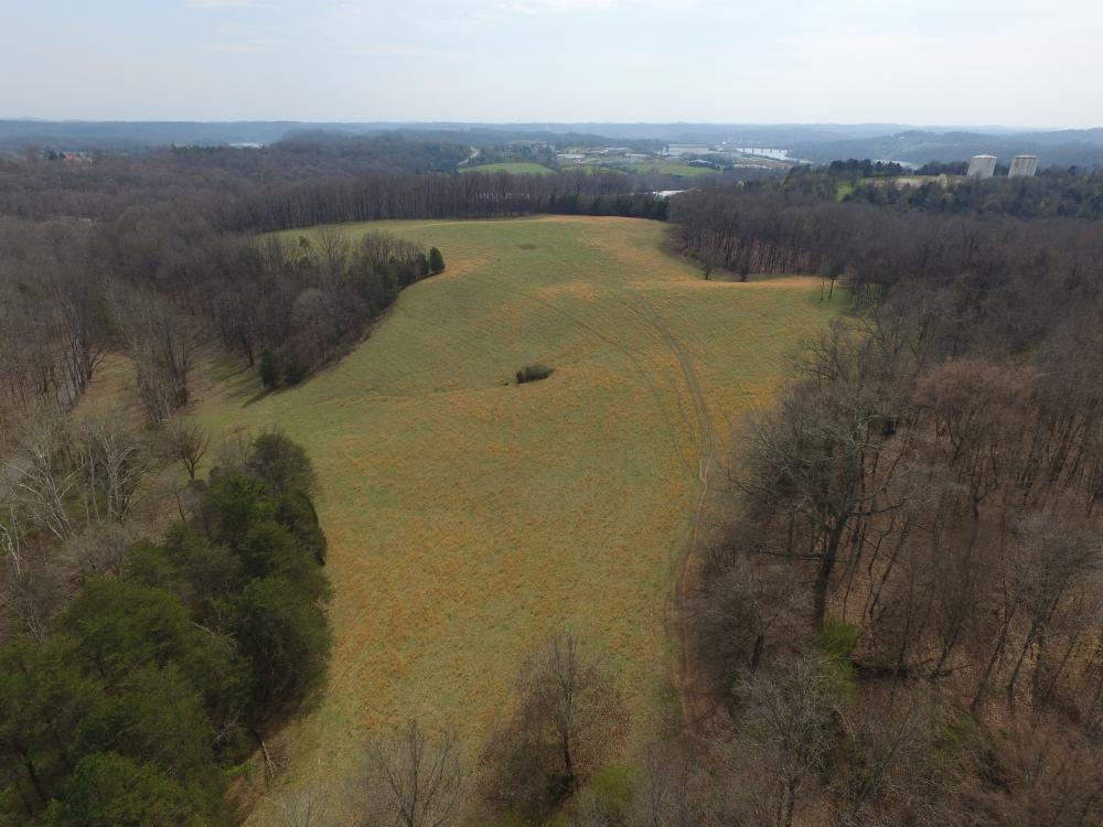 Sugarlimb Road Land Investment in Loudon County, TN