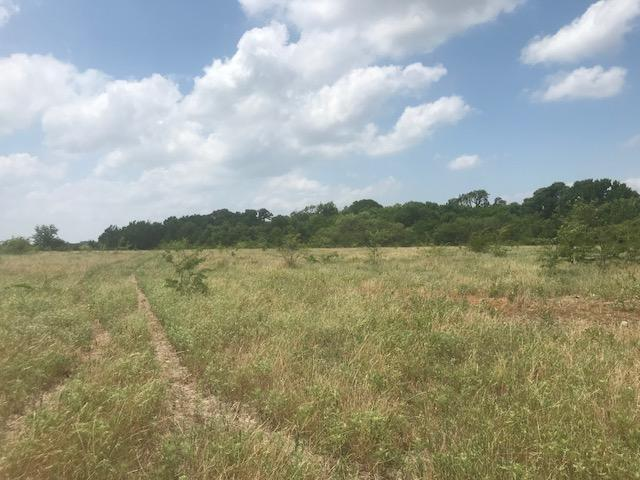 223 acre Lake Tawakoni Property