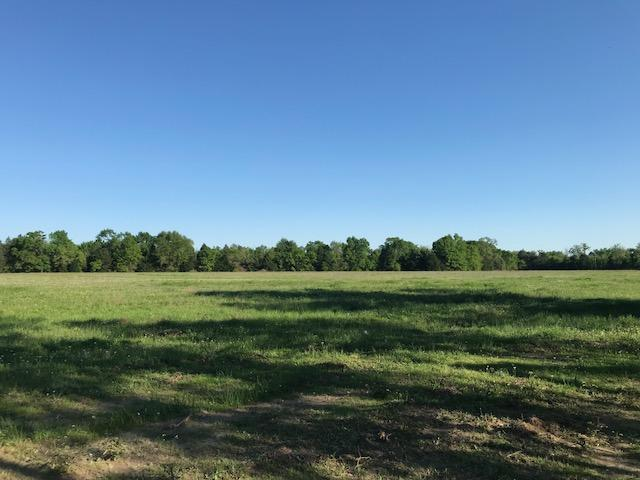 28 acres near Purtis Creek State Park in Van Zandt County, TX
