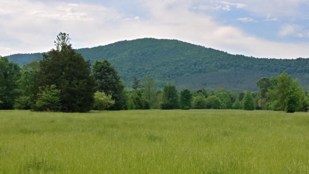 Ouachita Mountains Farm and Hunting Ranch in Montgomery County, AR