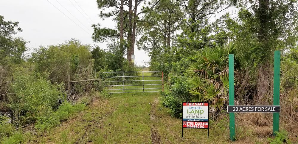 20 Acres off State Road 31 Mobile Home Site
