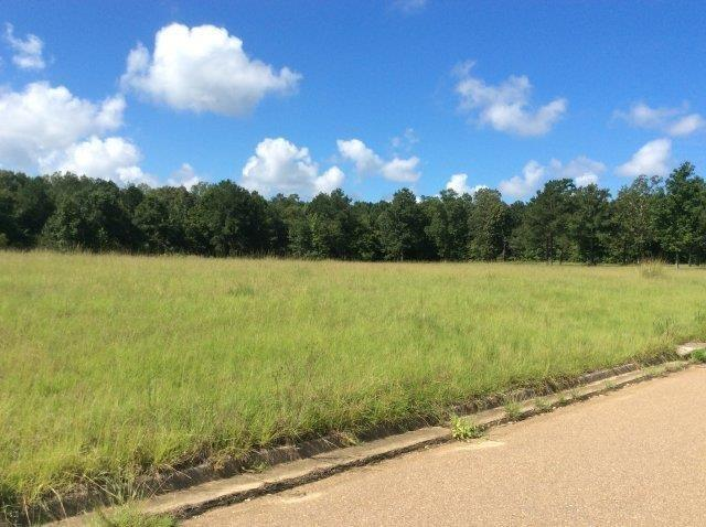 Commercial Lot - 4   Brandon, MS in Rankin County, MS