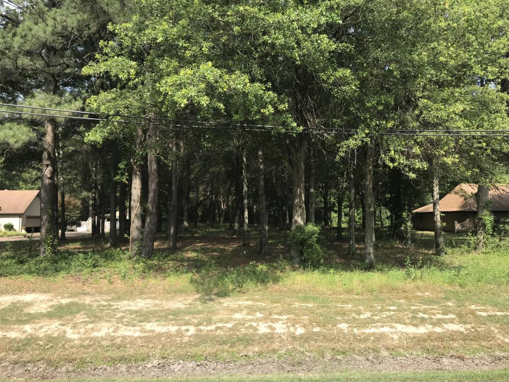 23+/- Acres Timberland, Residential or Development in Monroe County, AR