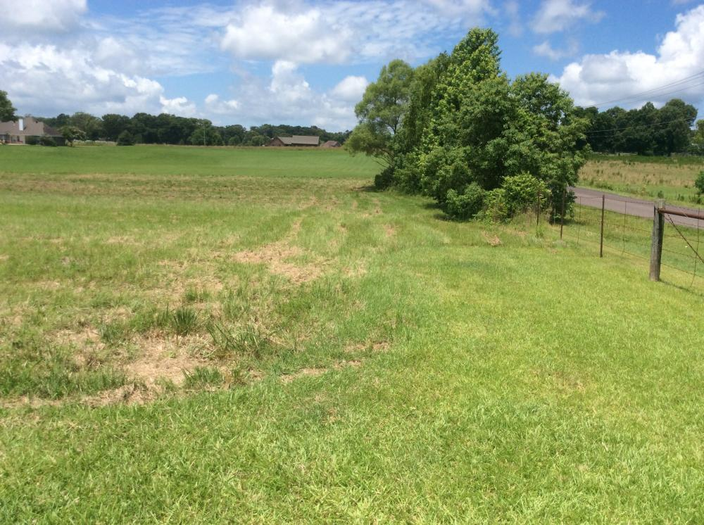 Country Meadow Estates Single Home Lot