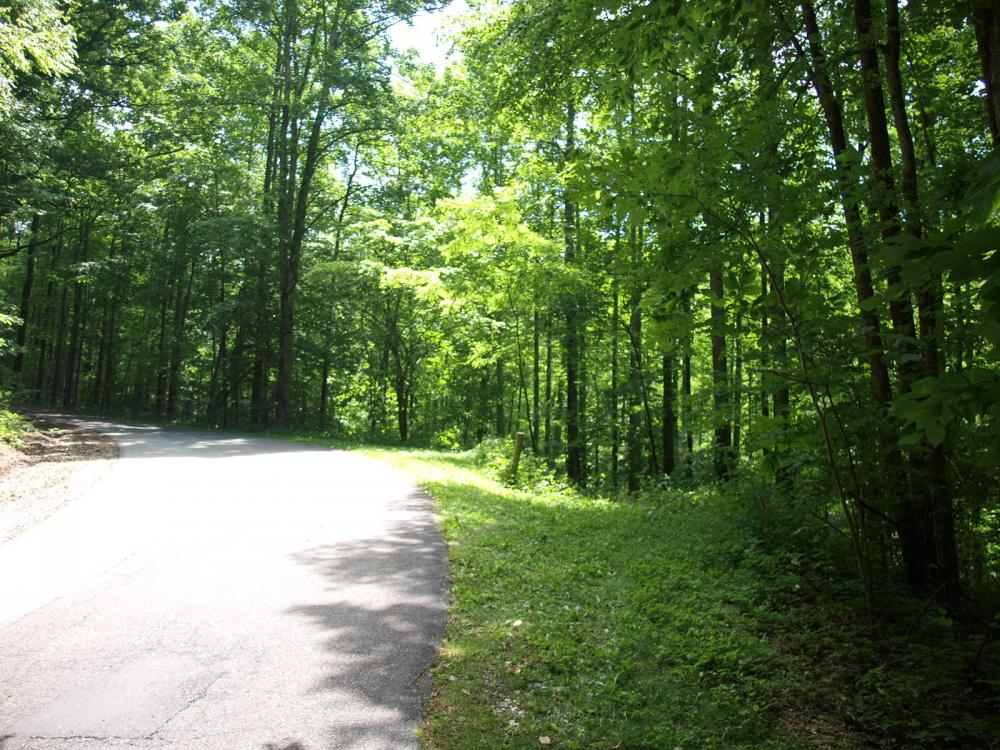 Apple Mountain Estate Lot (South) in Spruce Pine