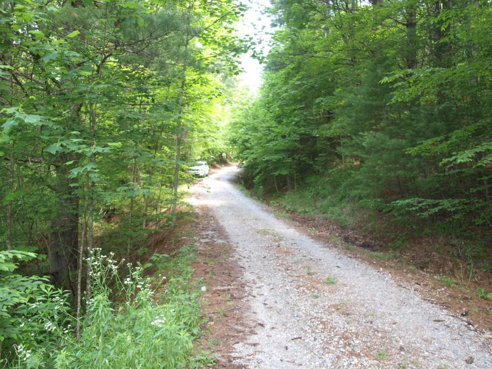Woodland Lot, Near Creek in Established Community (Lot H) in Mitchell County, NC
