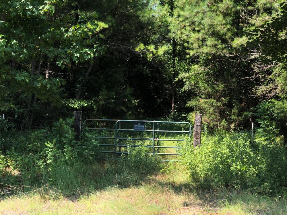 Great Acreage on County Road 136 in Calhoun County, MS