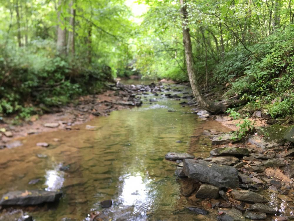 117.924 UNSPOILED AC in DANIEL BOONE NF in Rockcastle County, KY