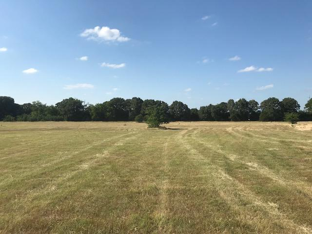 10 acres Mabank, Great Building Site, Pasture  in Kaufman County, TX